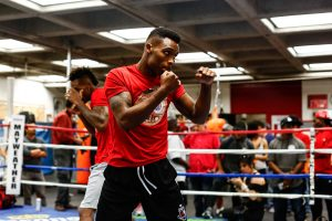 Photos From Stephanie Trapp/Mayweather Promotions