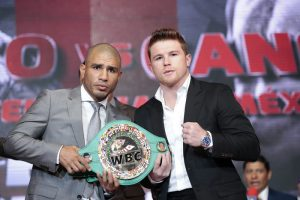 cotto-belt-stripped