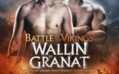 Battle of the Vikings