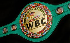 WBC belt