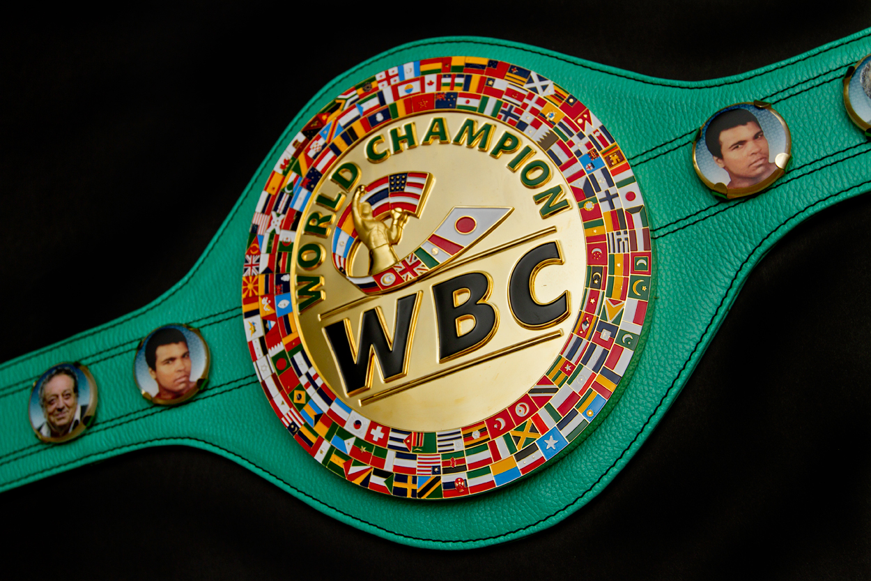 3rd Annual WBC Women's Convention Boxing News Ring News24