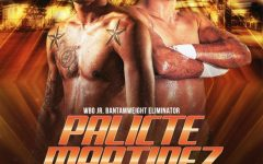 Aston Palicte vs. Jose Martinez - poster