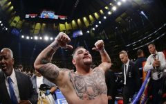 Andy-Ruiz-Jr-champion