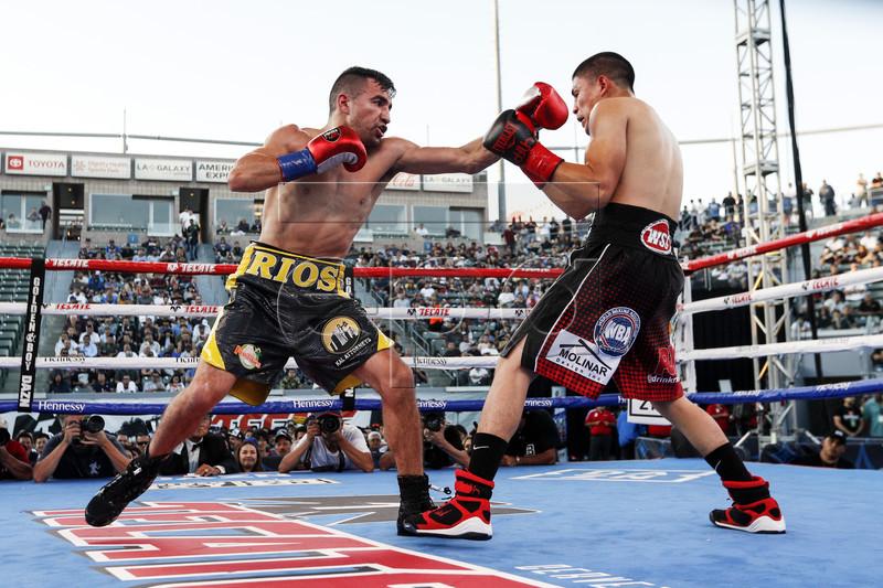 Ronny Rios vs. Diego de la Hoya