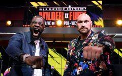 Wilder-Fury